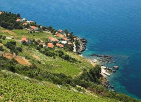 peljesac-wine-tour