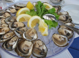ston-oysters-dubrovnik-private-tours